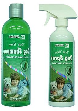 Antiseptic and Antifungal - Tea Tree Shampoo for Dogs Plus B