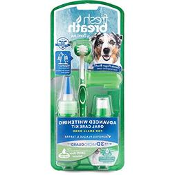Clean Fresh Breath Oral Care Kit Brushing Gel Tripleflex Too