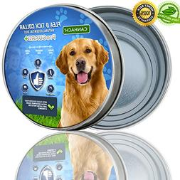 Flea and Tick Collar for Dogs 8 Months Protection  Protects