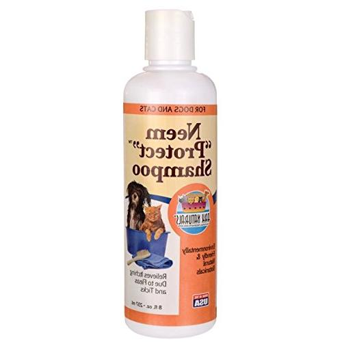 Ark Naturals Neem Protect Shampoo for Skin and Coat, For Cat