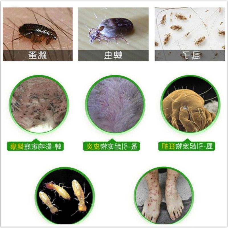 8pcs/lot Louse <font><b>Shampoo</b></font> Insecticidal Pest <font><b>Dog</b></font> Odor
