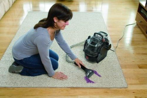carpet cleaner professional portable pet dog stains