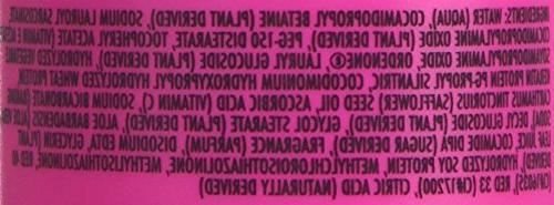 Pet Talk Deodorizing Shampoo 16.1oz