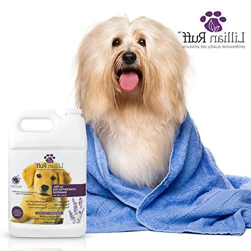 Lillian Professional Dog Shampoo with Tear Lavender Coconut Scent – Soothe Cleanse Normal Itchy Sensitive Skin While Improving Shine – in USA