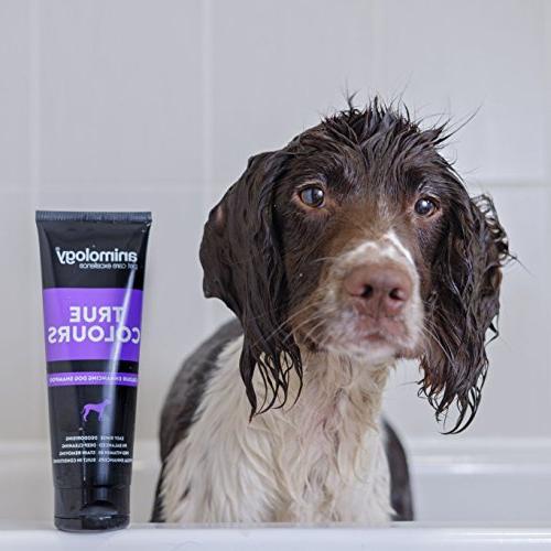 Animology True Colour Enhancing Dog Shampoo,