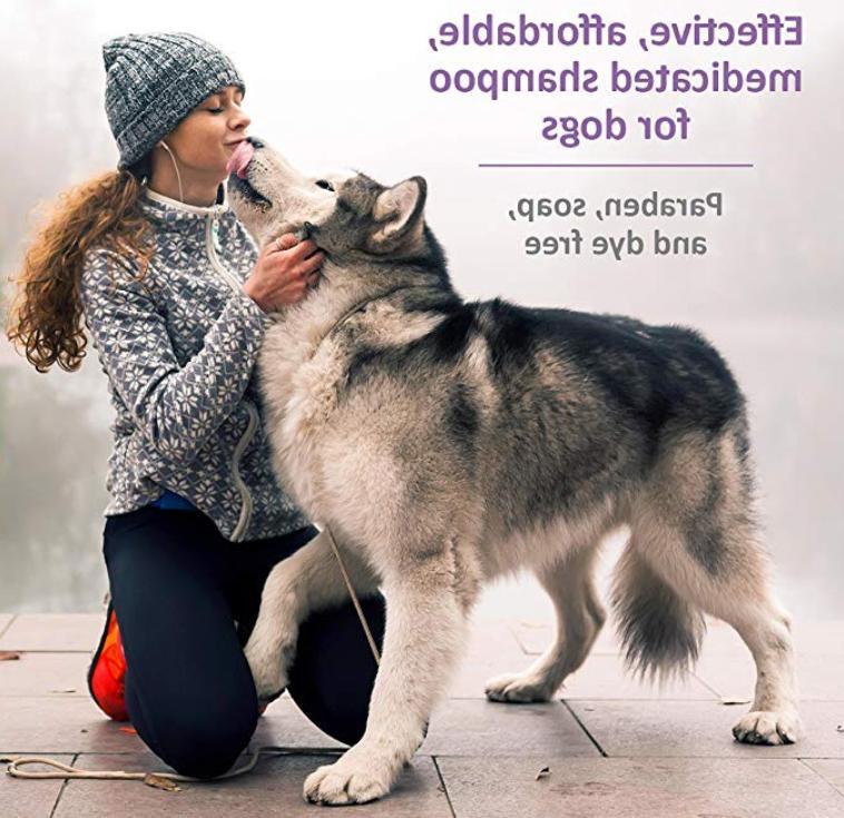 Shampoo SynergyLabs Veterinary Care Medicated Grooming Dog