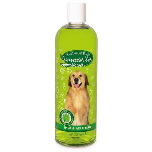 Green Tea & Mint Dog Dog Natural Choose Size