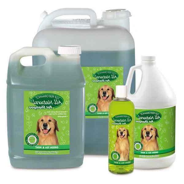 green tea and mint dog dog grooming