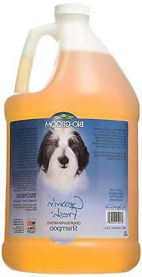 Bio-Groom Groom 'N Fresh Dog and Cat Conditioning Shampoo, 1