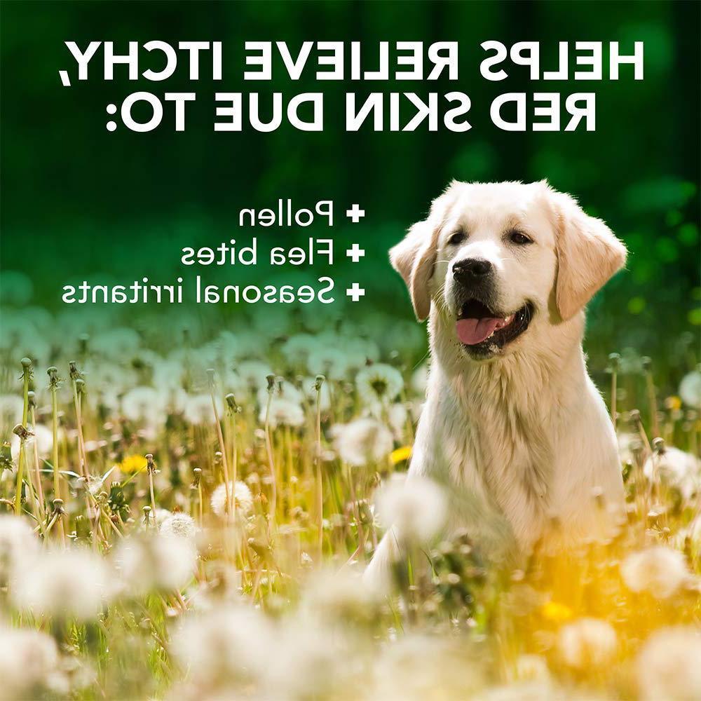 Medicated Anti Itch Dog Veterinarian Skin