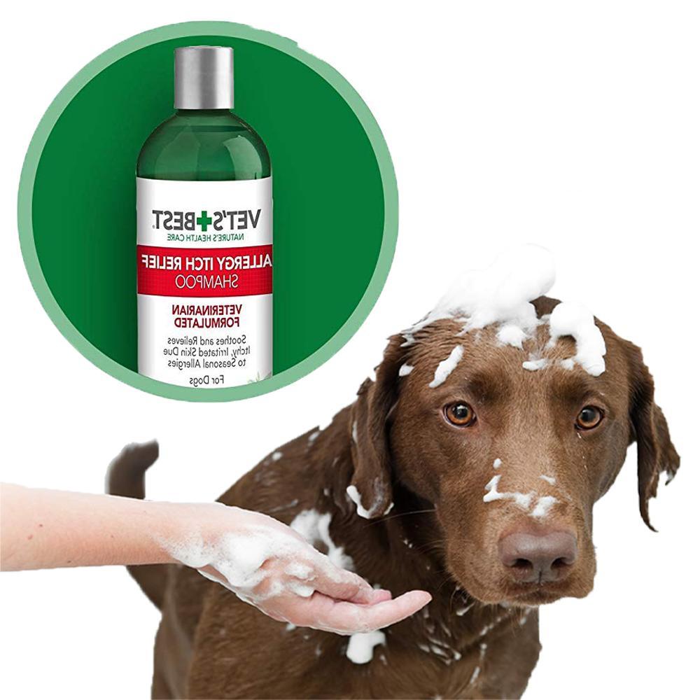 Medicated Relief Dog Shampoo Skin