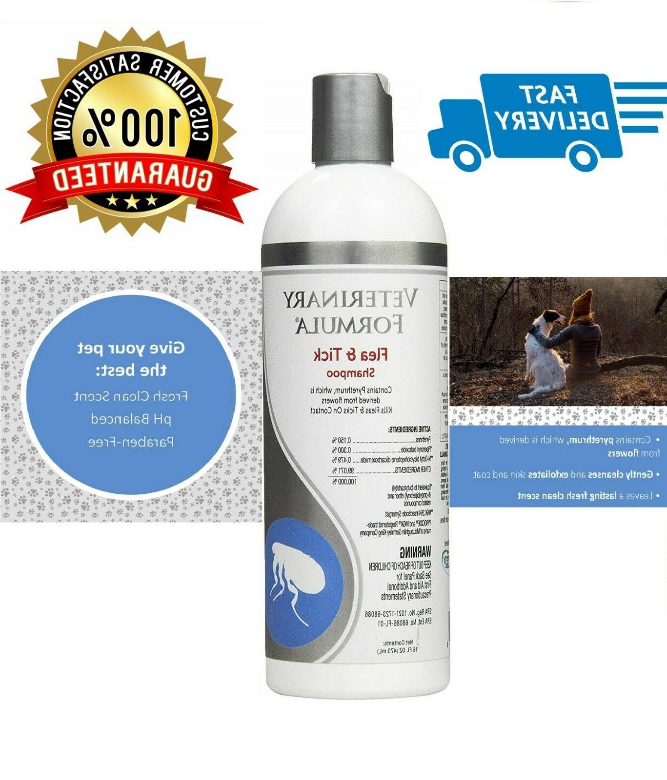medicated dog shampoo anti flea insects mange