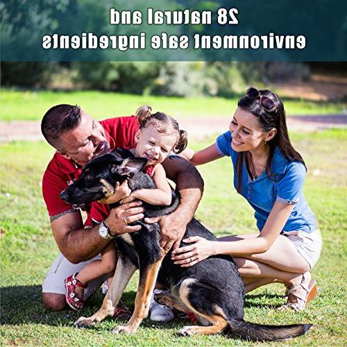Arava Natural Shampoo Anti Yeast Anti Dog - Healthy Skin & - First Spots Scrapes &