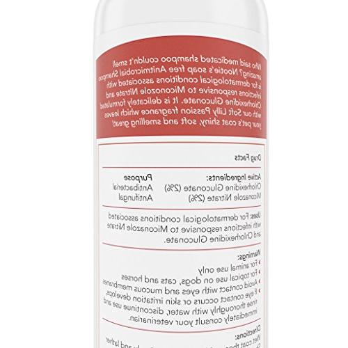 Medicated Dog Shampoo: Antibacterial Dog Lather Soothe Irritation and Strengthen Coat Pet Shampoo Also On and Dog Shampoo For Your Buck