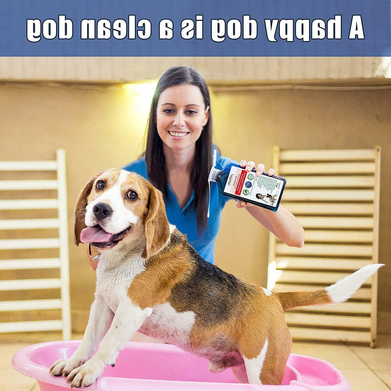 Medicated Dog Antifungal for Natural Organic