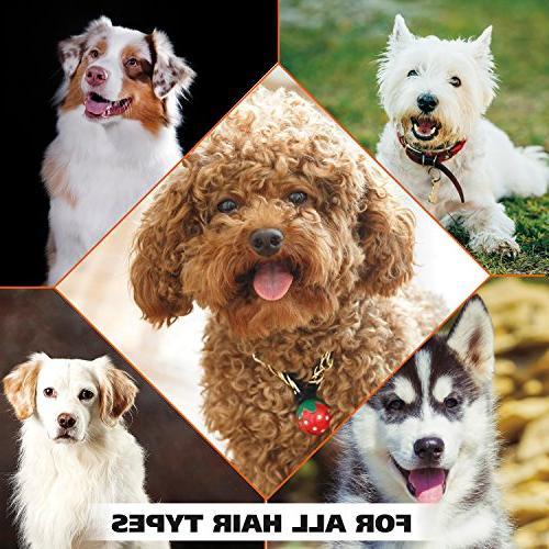 WAHL Oatmeal Tan Moisturizing Dog Grooming Shampoo Dry, Itchy, Skin