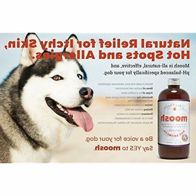 Shampoos Plus Conditioners Dog