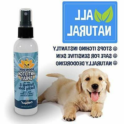 Shampoos Plus Anti Itch For Dogs And 100%