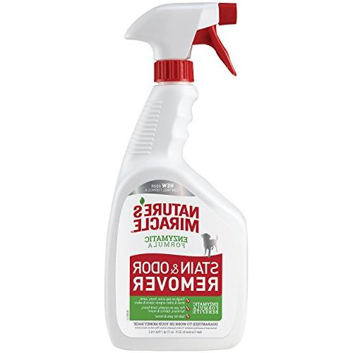 stain odor remover pets bacteria