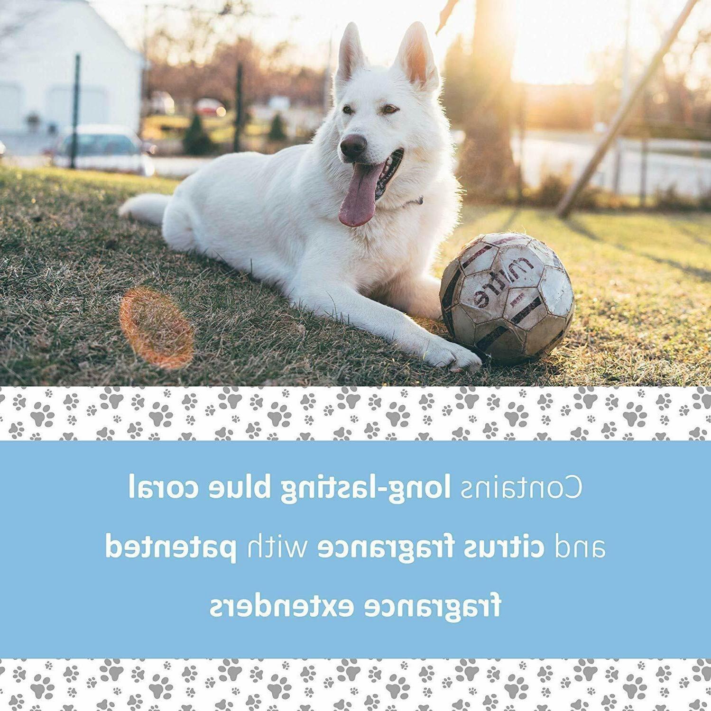 Veterinary Formula Solutions Snow White Shampoo Dogs, fl. oz.
