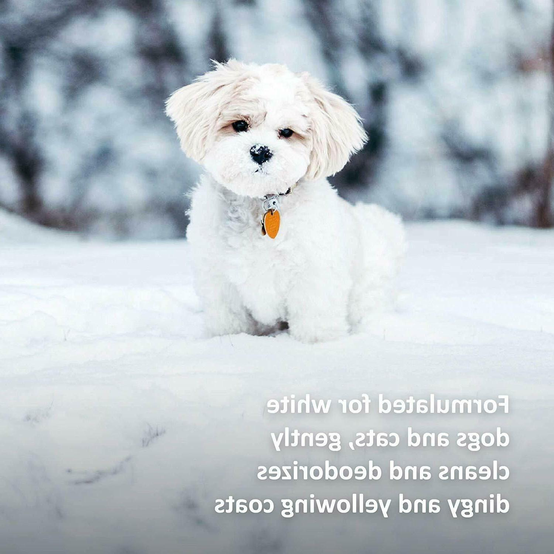 Veterinary Snow White Dogs, 17