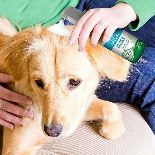 Vet's Waterless Bath | Shampoo Dogs Foaming Formula |