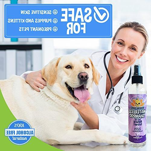 New | All Shampoo Dogs Cats Rinse Natural Extract | Grade - in USA Bottle 8oz
