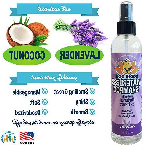 New Shampoo | Dry Shampoo Cats Rinse | Natural Extract | Grade Treatment in Bottle 8oz