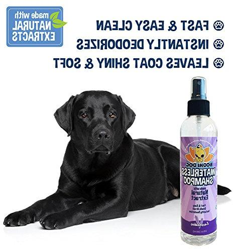 New Dog Shampoo | All Shampoo for Dogs Cats Rinse Required | Non-Toxic Natural Extract | Professional Grade Treatment - in USA - Bottle 8oz