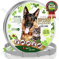 LuksStart Best Natural Pest Control Collar for Dogs & Cats: