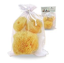Sponge Dog Luxury Natural Sea Sponges  for Canine Bath Care